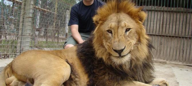 Patagônia 3/11: Zoológico de Luján