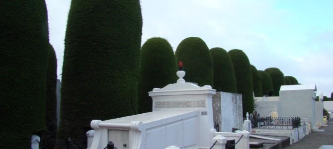 Patagônia 11/11: Punta Arenas