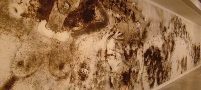 Exposição no CCBB – Cai Guo Qiang: Da Vincis do Povo