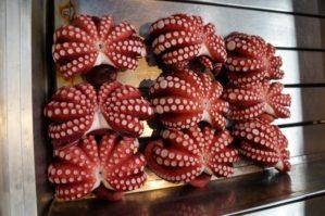 tsukiji_market_octopus