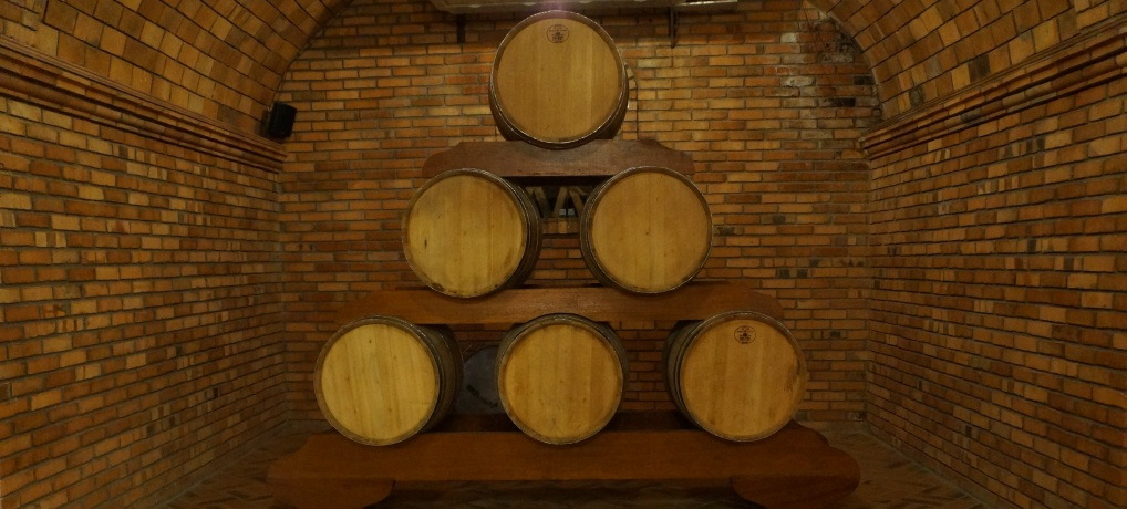 Visita à vinícola Salton em Bento Gonçalves